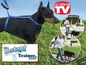 רצועה לאילוף הכלב Instant trainer