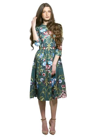 שמלת reina גוון ירוק
