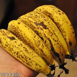 בננות אורגניות לא מובחלות