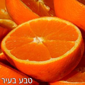 תפוז וושינגטון ללא ריסוס
